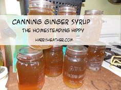 Canning ginger syrup to make more healthy ginger ale for our soda stream Beer Recipes, Canning Recipes, Real Food Recipes, Canning Syrup, Soda Stream Recipes, Homemade Ginger Ale, Home Canning, Canning Jars, Products