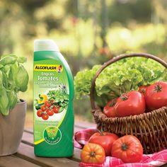 Engrais liquide Tomates, Légumes et Plantes Aromatiques Algoflash pour de délicieuses et abondantes récoltes. En savoir plus sur ce produit https://www.algoflash.fr/fr/fr/Produits/Engrais-Liquide-Tomates-Algoflash.html