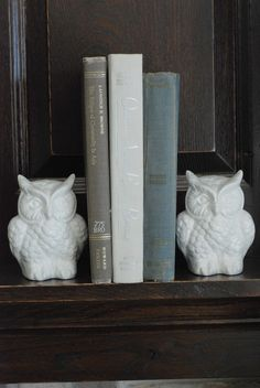 DIY bookends - find matching owls at a thrift store and spray paint them white. :)
