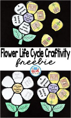 Flowering Plant Life Cycle Craftivity - - There are so many opportunities for hands-on science in the Spring! Add this flowering plant life cycle craftivity to your science centers today! Science Lesson Plans, Science Lessons, Life Science, Science Activities, Science Projects, Science Experiments, Science Memes, Sequencing Activities, Science Biology
