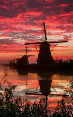 Dutch Windmills at Kinderdijk, Netherlands – Miracles from Nature Beautiful Sunset, Beautiful World, Beautiful Places, Pretty Pictures, Cool Photos, Photos Voyages, Belle Photo, Beautiful Landscapes, Nature Photography