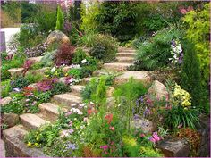 landscaping on steep hillsides with rock walls - Google Search