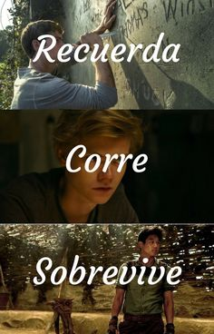 Read El Area from the story the maze Runner ( Newt y tu ) Terminada by (starblue with reads. Maze Runner The Scorch, Maze Runner Thomas, Hunger Games, Maze Runer, Percy Jackson, James Dashner, The Scorch Trials, Series Movies, Book Series