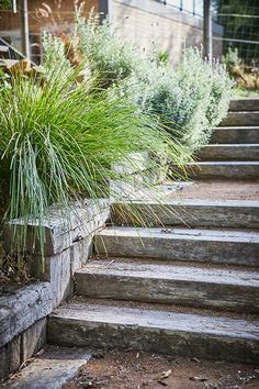 Best Picture For Australian garden landscaping grass For Your Taste You are looking for something, a Coastal Gardens, Beach Gardens, Outdoor Gardens, Seaside Garden, Rustic Gardens, Australian Garden Design, Australian Native Garden, House Landscape, Garden Landscape Design
