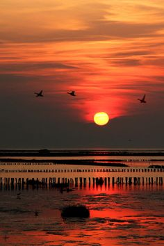 """""""Wattenmeer im Abendlicht"""" Photography by freedom-of-art buy now as poster, art print and greeting card. Beautiful Sunset, Beautiful World, Beautiful Images, Sky Sunset, World Heritage Sites, Ciel, Countryside, Netherlands, Nature Photography"""