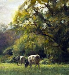 Sunlight and Shadow at Play | oil by John McCartin