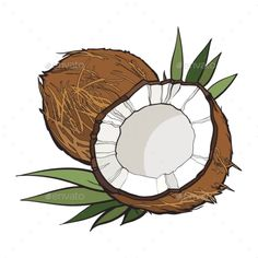 Whole and cracked coconut, vector illustration isolated on white background. Drawing of coconut on white background, delicious healthy vegan snack Illustration , Indian Illustration, Botanical Illustration, Coconut Vector, Coconut Milk Smoothie, Flower Phone Wallpaper, Orange Aesthetic, Aesthetic Stickers, Logo Food, Food Illustrations