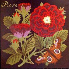 Rose | Elizabeth Bradley