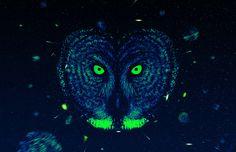 The Howl by Rui Faria, via Behance