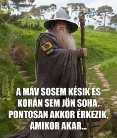 Gandalf, Jokes Quotes, Lotr, The Hobbit, Cool Kids, Haha, Funny Pictures, Thoughts, Smile
