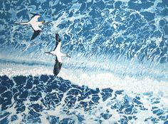 Gannets from Bempton Cliffs,