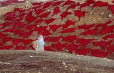 Morocco, Bruno Barbey