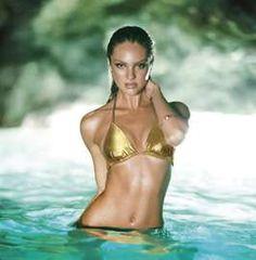 Vixen Swim Lookbooks - Victoria's Secret Swim 2011 Features the Sultry Candice Swanepoel (GALLERY)