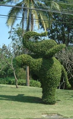 elephant topiaries - Google Search