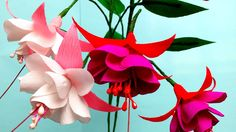 Paper Flower Fuchsia Double (flower # 98)