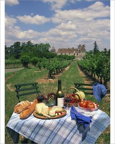 Hahnemuhle PHOTO RAG Fine Art Paper (other products available) - Table set with a picnic lunch in a vineyard in Aquitaine, France, Europe - Image supplied by WorldInPrint - Fine Art Print on Paper made in the UK Summer Aesthetic, Aesthetic Food, Travel Aesthetic, Aesthetic Outfit, Aesthetic Vintage, Aesthetic Girl, Camping Aesthetic, Aesthetic Bedroom, European Summer