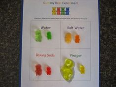 Gummy Bear Science Worksheets | This worksheet is simply there for you to display your before and ...