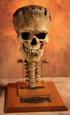 Frankenstein (adapted great stuff skull, spinal column, bolts & wires, base)?