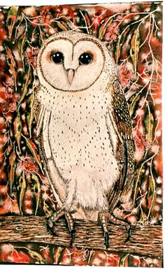 Masked Owl by Sheridon Rayment