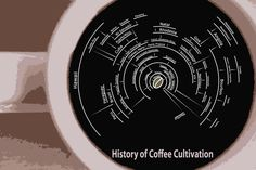 History of Coffee Cultivation