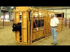 1000 Images About Cattle Chutes On Pinterest Cattle