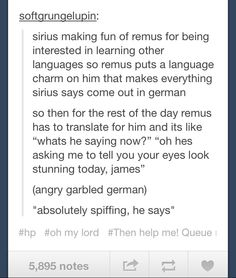 Remus and Sirius flirting Harry Potter Marauders, Harry Potter Fandom, Harry Potter Memes, Harry Potter World, Marauders Era, Hogwarts, Remus And Sirius, No Muggles, Wolfstar
