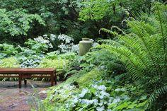 Le jardin de sous-bois aime les espaces ombragés et légèrement humides. N'hésitez pas à planter à l'ombre des arbres une multitude de végétaux qui affectionnent ces situations délicates. Le charme des fougères se mêleront à merveille avec des graminées, des feuillages larges, généreux et décoratifs comme les hostas ou les fatsias. Pour compléter cette ambiance tout en sérénité et pleine de richesse, ajoutez quelques vivaces pour suggérer des touches de couleurs clairs et légères.