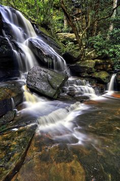 Somersby Falls photo Central Coast, Aussies, Fall Photos, Amazing Photography, Waterfall, Nature, Outdoor, Autumn Photos, Outdoors