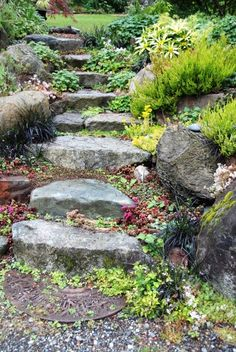 If you have a hill in your backyard, this could be the solution to your pathway problems. Use rocks to create a small staircase up the hill. Add some vegetation and you have a great backyard pathway! | 15 Backyard Rock Pathways to Die For