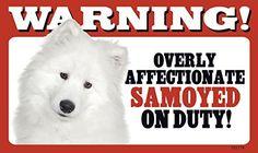 Warning! Overly Affectionate Samoyed On Duty! Dog Wall Sign with Bonus
