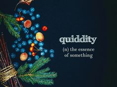 Quiddity-