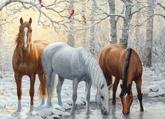 Close-up of 'Winter Trio' by Persis Clayton Weirs