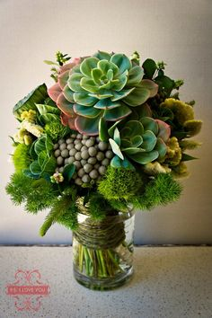 Modern succulents arrangement. Love the greenery in this