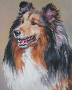 Shetland Sheepdog sheltie 11x14 CANVAS PRINT of LAShepard painting dog LSHEP