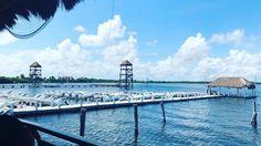 Untitled Marina Bay Sands, Building, Travel, Instagram, Viajes, Buildings, Destinations, Traveling, Trips