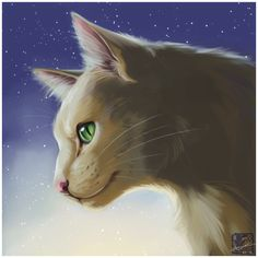 Squirrelflight by ashkey on DeviantArt