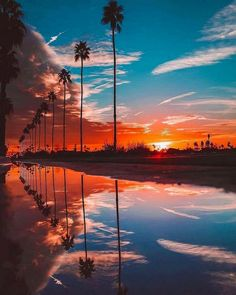 Beautiful sunset in Palm Springs, California 🌅 Would you want to visit this place? 😍 Tag a freind who would! Beautiful Sunset, Beautiful World, Beautiful Places, Wonderful Places, Palm Springs Kalifornien, Nature Architecture, All Nature, Nature Beach, Amazing Nature