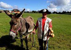 Un peregrino alemán y su asno se reponen del Camino en Tabeirós http://www.rural64.com/st/turismorural/Un-peregrino-aleman-y-su-asno-se-reponen-del-Camino-en-Tabeiros-6268