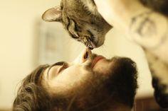 Beards and kitties. Love.