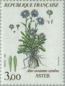 Show Us Your Beautiful Flowers on Stamps! - Stamp Community Forum - Page 16 Rare Stamps, Vintage Stamps, Timbre Collection, Postage Stamp Art, Photocollage, Handwritten Letters, Flower Stamp, Little Flowers, Aster