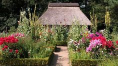 Botanischer Garten Hamburg im August
