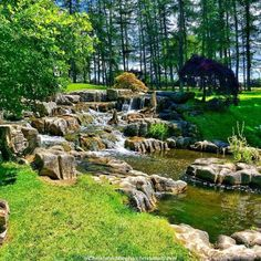 St Fiachra's Gardens at The Irish National Stud in county Kildare, Ireland via @christobeltravel