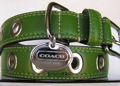 Coach Green Grommet Leather Dog Collar, love this collar on my boy he looks so sharp wearing it.