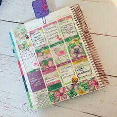 And midweek in m EC  #erincondren. Sticker set from my shop others tagged  #erincondrenlifeplanner #erincondrenstickers #erincondrenverticallayout #eclp #weloveec #llamalove #pgw #plannergirl #planneraddict #plannerlove #plannercommunity #plannerstickers  #Planner #planning #planners #plannerstickers #agenda #plannerdecor #plannernerd #plannerlove #planneraddict #plannercommunity  #eclp #plannerclips #plannerclipaddict #ecfanfriday #etsy #etsyhunter #etsyfinds  #shopetsy #etsyseller…