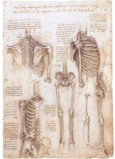 Welcome to Dover Publications Leonardo da Vinci Treasury CD-ROM and Book