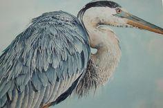 Great Blue Heron DEMO - WetCanvas