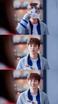 im not a robot ! Yoo Seung Ho, Korean Drama Quotes, Korean Drama Movies, Asian Actors, Korean Actors, Oppa Gangnam Style, Weightlifting Fairy Kim Bok Joo, Kdrama Memes, Kdrama Actors