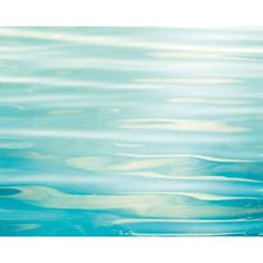 Found it at Wayfair - Soothing by Carolyn Cochrane Photographic Print on Wrapped Canvas