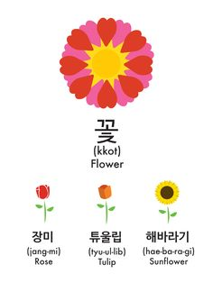 How to Say Flower in Korean