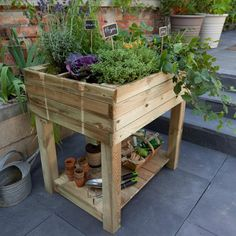 pour terrarium jardin potager sur pieds 100 x 100 x 80 cm